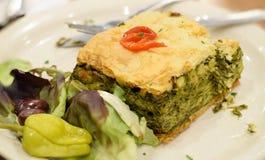 Εύγευστο τετράγωνο της ελληνικής πίτας σπανακιού στοκ εικόνες
