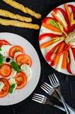 Εύγευστο χορτοφάγο antipasti Στοκ εικόνες με δικαίωμα ελεύθερης χρήσης