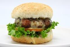 Εύγευστο burger τυριών με το φρέσκες μαρούλι και την ντομάτα στοκ εικόνες