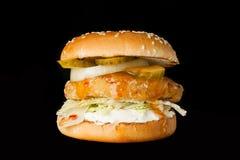 Εύγευστο burger Στοκ εικόνες με δικαίωμα ελεύθερης χρήσης