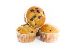 Εύγευστο Cupcakes με τα τσιπ σοκολάτας στοκ φωτογραφία