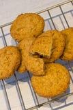 Εύθρυπτα Oatmeal μπισκότα ακριβώς από το φούρνο στοκ εικόνα με δικαίωμα ελεύθερης χρήσης
