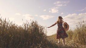 Εύθυμα και ξένοιαστα τρεξίματα κοριτσιών κατά μήκος του τομέα σίτου υποστηρίξτε την όψη κίνηση αργή απόθεμα βίντεο