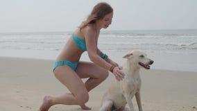 Εύθυμη αρκετά νέα γυναίκα στο μπλε κοστούμι λουσίματος, κάθισμα και αγκάλιασμα του άσπρου σκυλιού της στην παραλία στον Ινδικό Ωκ φιλμ μικρού μήκους