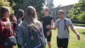 Εύθυμη ομάδα σπουδαστών που συναντιούνται στο πάρκο απόθεμα βίντεο