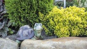 Εύθυμη χελώνα faux σε ένα υπόβαθρο των arborvitae και barberry θάμνων Στοκ εικόνα με δικαίωμα ελεύθερης χρήσης