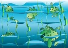 εύθυμοι βάτραχοι Στοκ εικόνες με δικαίωμα ελεύθερης χρήσης