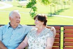 Εύθυμοι παππούδες και γιαγιάδες Στοκ Εικόνες