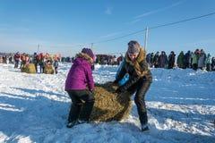 Εύθυμος ανταγωνισμός για τη μεταφορά σανού στη χειμερινή διασκέδαση φεστιβάλ μέσα Στοκ Εικόνα