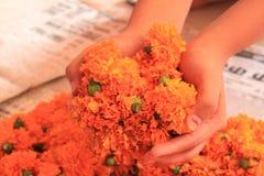 Εύθυμος εορτασμός Diwali με τα φωτεινά marigold λουλούδια Στοκ φωτογραφίες με δικαίωμα ελεύθερης χρήσης