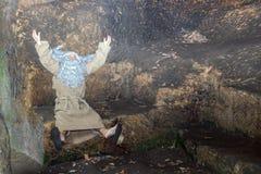 Εύθυμος ερημίτης Στοκ φωτογραφίες με δικαίωμα ελεύθερης χρήσης