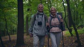 Εύθυμο ηλικίας ζεύγος που περπατά κατά μήκος της πορείας στο δάσος φιλμ μικρού μήκους
