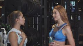 Εύθυμο θηλυκό υψηλό φίλων μετά από να τελειώσει να επιλύσει στη γυμναστική από κοινού φιλμ μικρού μήκους
