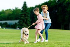 εύθυμο παιχνίδι μητέρων και κορών με το χρυσό retriever σκυλί στην πράσινη χλόη στοκ φωτογραφίες με δικαίωμα ελεύθερης χρήσης