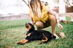 Εύθυμο παιχνίδι γυναικών με το ευτυχές κουτάβι rottweiler Στοκ φωτογραφία με δικαίωμα ελεύθερης χρήσης
