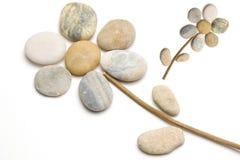εύκολο λουλούδι που γίνεται τα χαλίκια Στοκ φωτογραφία με δικαίωμα ελεύθερης χρήσης