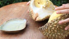 Εύκολα εξυπηρετώντας ταϊλανδικά φρούτα Durian απόθεμα βίντεο