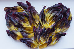 εύκολος επιμεληθείτε την καρδιά λουλουδιών Στοκ φωτογραφία με δικαίωμα ελεύθερης χρήσης