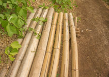Εύκολος πάγκος μπαμπού εκτός από τη δασική πορεία Στοκ φωτογραφία με δικαίωμα ελεύθερης χρήσης