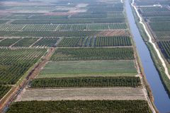 Εύφοροι τομείς στο δέλτα του ποταμού Neretva στοκ εικόνα με δικαίωμα ελεύθερης χρήσης