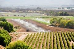Εύφορο αγρόκτημα Calif με το νερό Στοκ Εικόνα