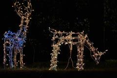 Ελάφια διακοσμήσεων φω'των Χαρούμενα Χριστούγεννας Στοκ Εικόνες