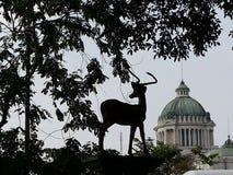 Ελάφια στο ζωολογικό κήπο Στοκ φωτογραφίες με δικαίωμα ελεύθερης χρήσης