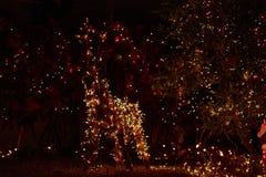 Ελάφια φω'των Χαρούμενα Χριστούγεννας Στοκ Φωτογραφία