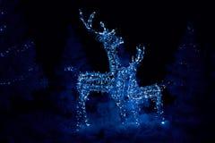 Ελάφια Χριστουγέννων πυράκτωσης Στοκ Φωτογραφίες