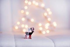 Ελάφια Χριστουγέννων σε ένα άσπρο υπόβαθρο bokeh Στοκ Φωτογραφίες