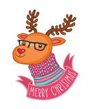 Ελάφια Χριστουγέννων στα γυαλιά hipster Στοκ Εικόνες