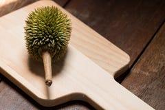 ελάχιστα durian Στοκ εικόνες με δικαίωμα ελεύθερης χρήσης