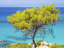 Ελλάδα Στοκ Φωτογραφία