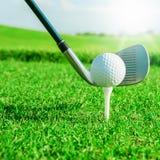 ελέγξτε τις απεικονίσεις γκολφ λεσχών περισσότερο παρακαλώ το χαρτοφυλάκιό μου αθλητικό Πράσινοι τομέας και σφαίρα στη χλόη Στοκ εικόνα με δικαίωμα ελεύθερης χρήσης