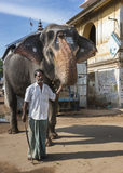ελέφαντας το mahout του Στοκ φωτογραφία με δικαίωμα ελεύθερης χρήσης