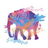 Ελέφαντας τρεξίματος Στοκ Φωτογραφία
