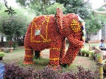 Ελέφαντας φιαγμένος από ντομάτες Στοκ εικόνα με δικαίωμα ελεύθερης χρήσης