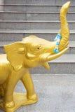 ελέφαντας χρυσός Στοκ εικόνα με δικαίωμα ελεύθερης χρήσης