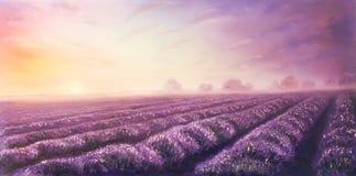 ελαιογραφία lavender των τομέων στον καμβά κόκκινο ηλιοβασίλεμα τοπίων χρωμάτων δονούμενο Στοκ Εικόνες