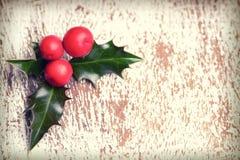 Ελαιόπρινος Χριστουγέννων με τα κόκκινα μούρα Στοκ φωτογραφίες με δικαίωμα ελεύθερης χρήσης