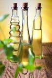 Ελαιόλαδα στα μπουκάλια, μεσογειακό αγροτικό θέμα Στοκ Εικόνα