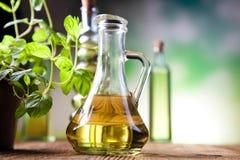 Ελαιόλαδα στα μπουκάλια, μεσογειακό αγροτικό θέμα Στοκ Εικόνες