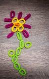 Ελαστικές ζώνες τρίχας Hairbands - λουλούδι Στοκ φωτογραφίες με δικαίωμα ελεύθερης χρήσης