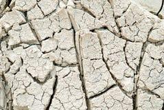 Εδαφολογική ραγισμένη ξηρασία σύσταση στοκ φωτογραφία με δικαίωμα ελεύθερης χρήσης