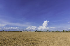 Εδαφολογική ρύθμιση περιοχής γης και πρόγραμμα αποκατάστασης Στοκ Εικόνες