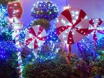 Ελαφριά διακόσμηση Χριστουγέννων στον κήπο Στοκ Φωτογραφίες
