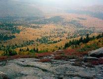 Ελαφριά ομίχλη φθινοπώρου από την κορυφή του βουνού βόρειου Baldface, ίχνος κύκλων Baldface, εγκοπή του Evans, Νιού Χάμσαιρ Στοκ Φωτογραφία