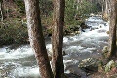 Ελαφριά ορμητικά σημεία ποταμού στοκ φωτογραφία