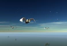 Ελαφριά πτήση Στοκ Εικόνες