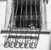 ελαφριά σκιά Στοκ εικόνα με δικαίωμα ελεύθερης χρήσης